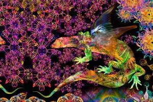 nf21. Cosmic Chamelion artcard