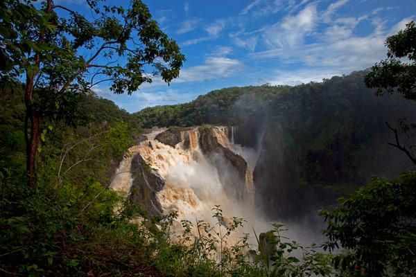 nf249. Barron Falls Artcard