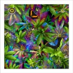 fp4. Passionflower Fabric Patch. 100% cotton fabric patches (organic) featuring unique nature designs by Australian artist Gerhard Hillmann. FREE POSTAGE WORLDWIDE! - Patchwork & Quilting..