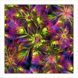 fp26. Acacia Dream Fabric Patch