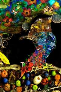 nf156a. Birdseed Artcard