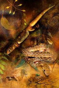 nf228. Snakey Ground Artcard