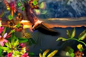nf243c. Tropical Dawn Artcard