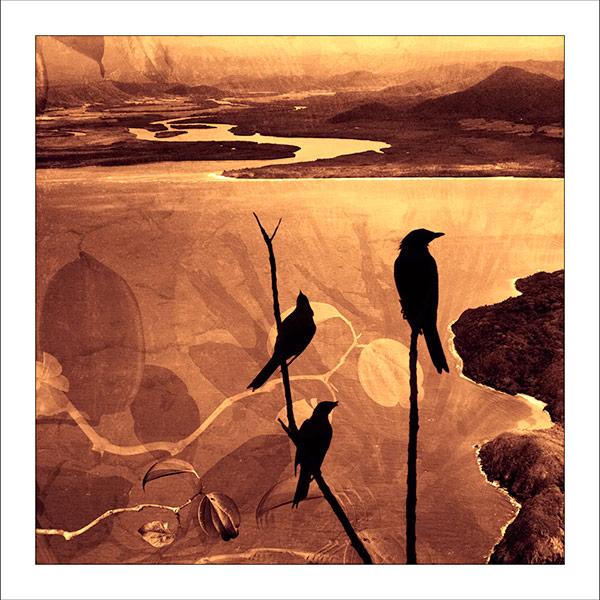 fp83. Blackbirds Fabric Patch