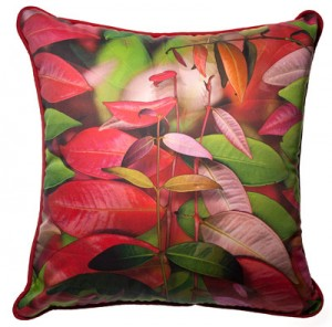 Lillypilly cushion
