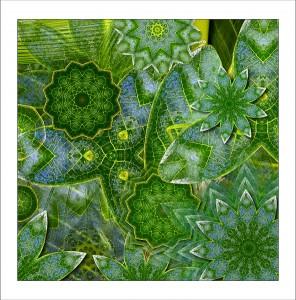 Leafy katydid mandala 1 fabric patch