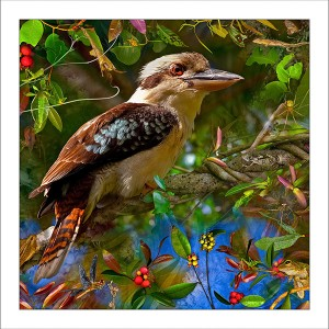 fp217. Kookaburra fabric patch