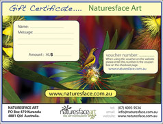 gift certificates now available by Gerhard Hillmann