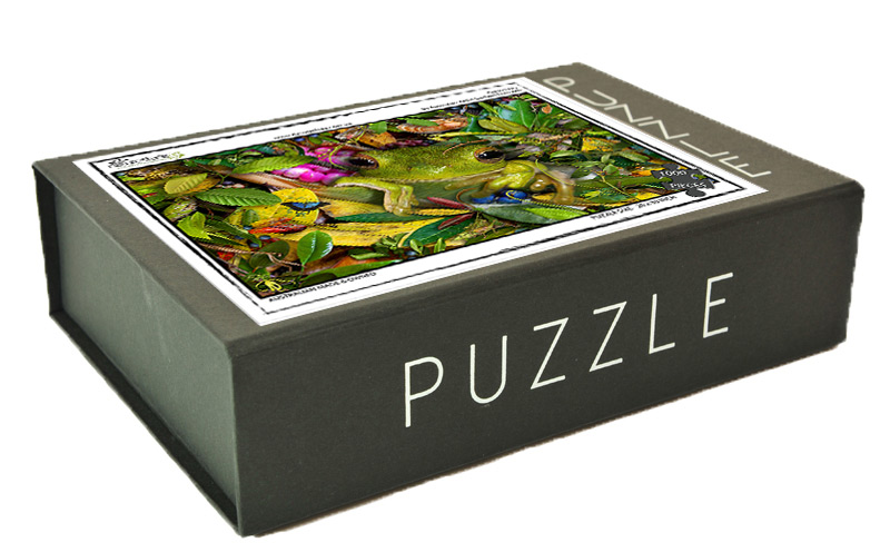 greenfrog_puzzlebox_wo