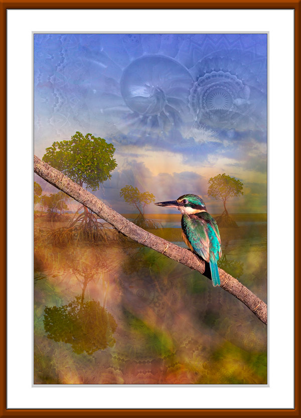 Kingfisher Tide limited edition by Gerhard Hillmann