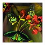fp23. Three Birdwings Fabric Patch