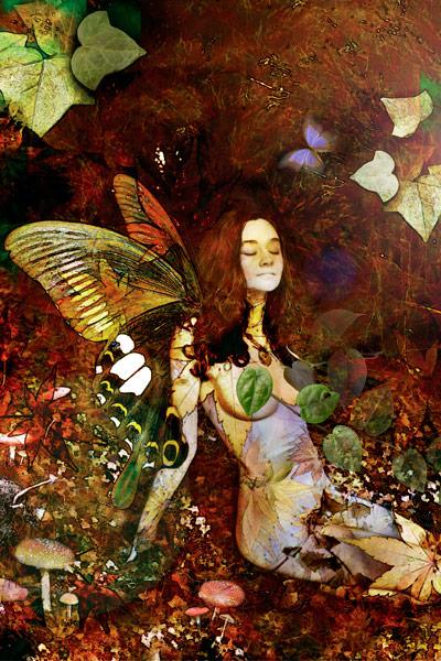 nf54a. Fairy Artcard