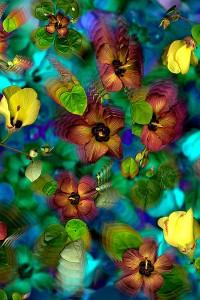 nf132. Native Hibiscus Artcard