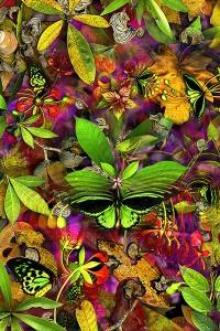 nf217. Birdwing Artcard