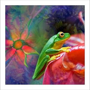 fp125. Greenfrog Harmonics fabric patch