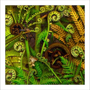 fp149. Treefern fabric patch