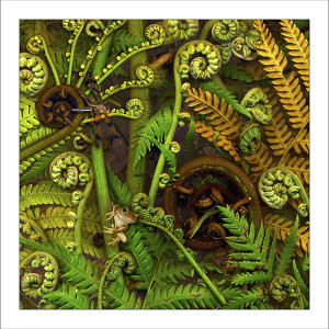 fp223. Green-eyed treefern fabric patch by Gerhard Hillmann