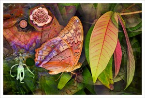 Flutterby Leaf fabric print