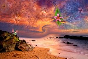 nf262. Morning Wave Artcard