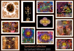 Symbiosis collection by Gerhard Hillmann