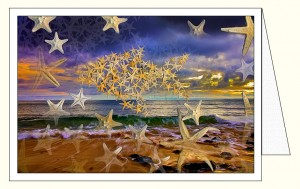 nf367_surfing_stars_wo