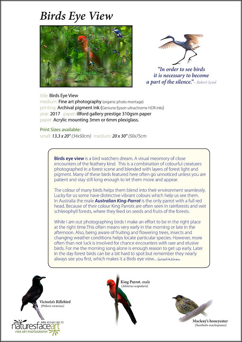birds_eye_view_info_page_wo